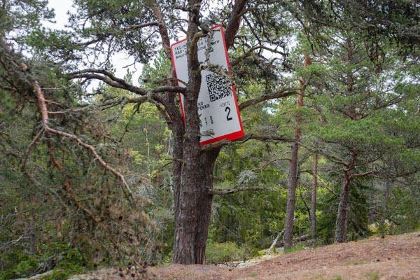 Vessa Pekka Raniko Grace 2019 Barefoot Path Korpo (1)